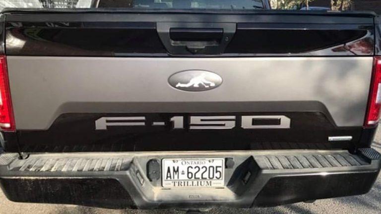 FORD - F150 - Partial - Vinyl Wrap Toronto - Decals - Vehicle Wrap in Etobicoke - Avery Dennison & 3M - Custom Truck Decals