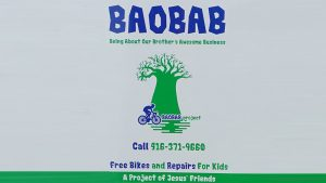 Steve's Bicycle Trailer - Charity - Vinyl Wrap Toronto - BAOBAB