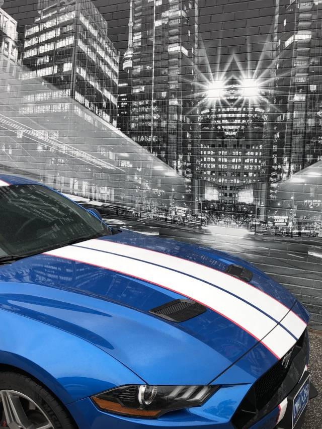 Ford Mustang - Racing Stripes - Vinyl Wrap Toronto - vehicle wrap cost estimation