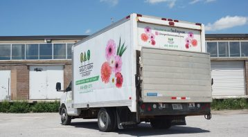 Boost your branding game with Decals - Common Decals Myths - Vinyl Wrap Toronto