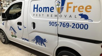 Vinyl Wrap Toronto Nissan NV200 2020 Avery Dennison White Van vinyl Decals Home Free Side
